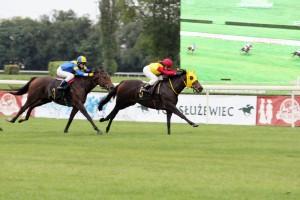 Dunayka(5)+K.Kamińska,Nimfa(3)+J.Balcerska 3-go.uczniowska-26.09.15